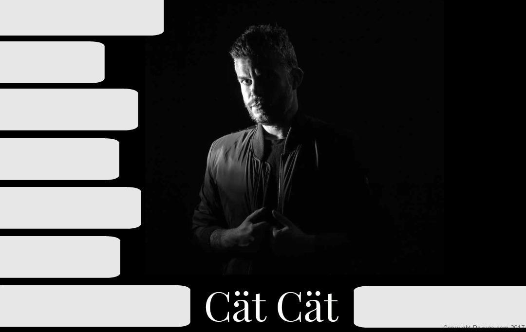 CatCat playlist